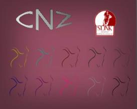 CNZ Gloves HUD_cropped