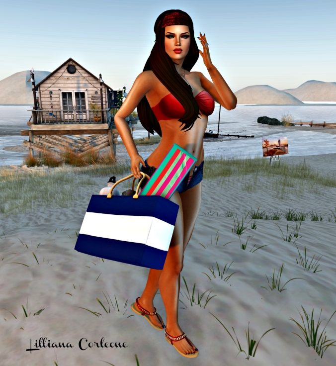 August 2nd Blog Post #3_cropped