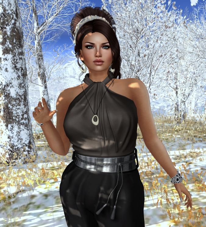 November 21st Blog Post Photo Valsnia 1_cropped