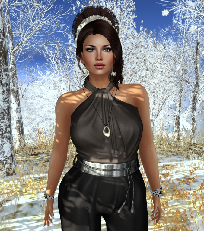 November 21st Blog Post Photo Valsnia 6_cropped