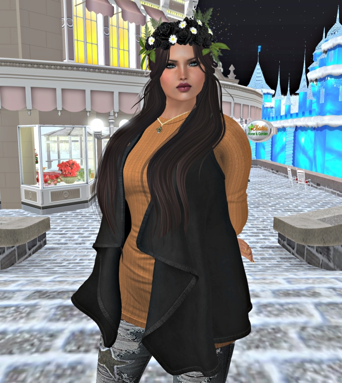 December 17th Blog Post one Noelm Hs_cropped