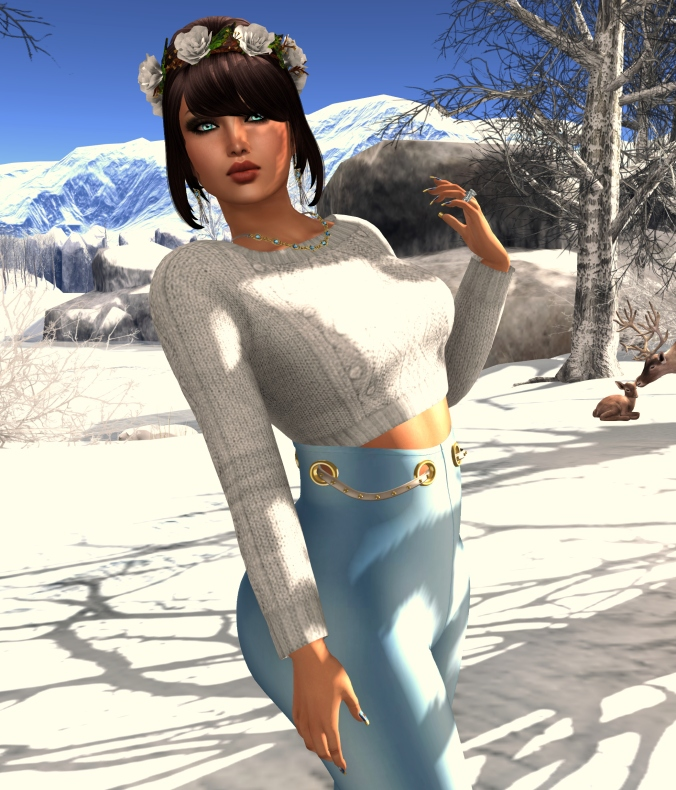 December 2 Blog Post Model 2 - 11-1_cropped