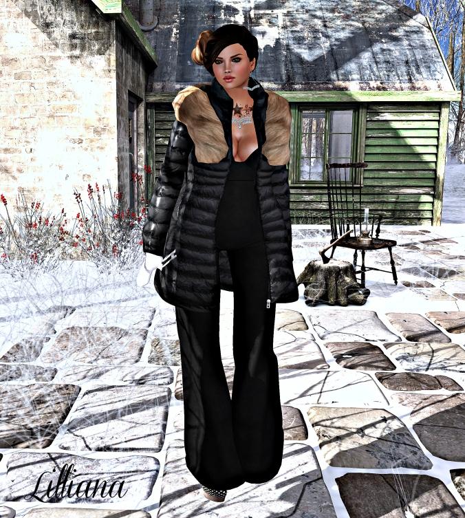 December 26th Blog Post Photo #1m_cropped v2