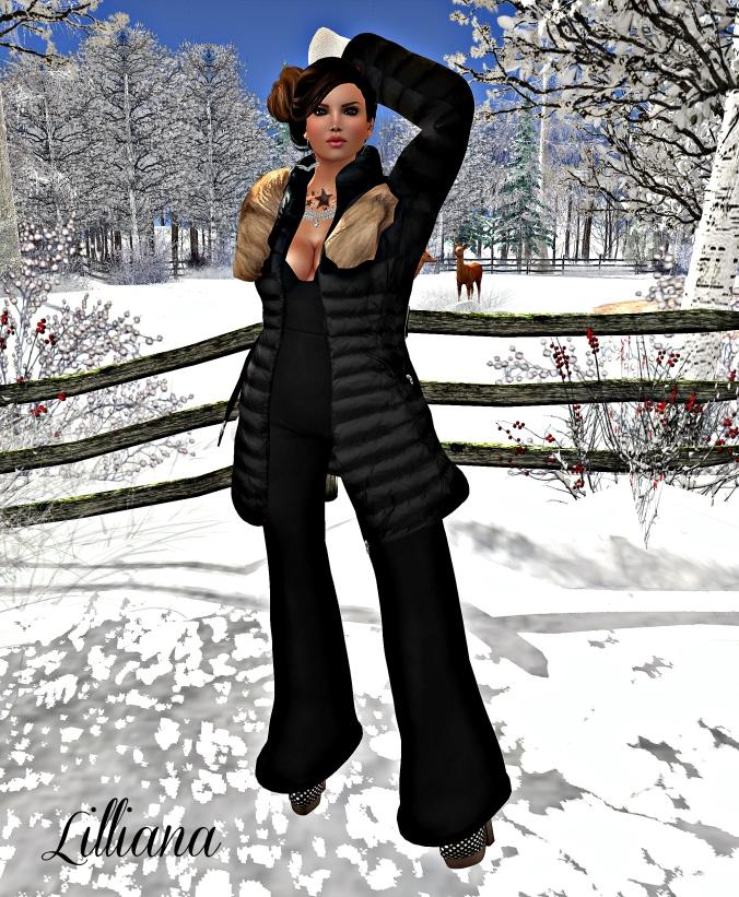 December 26th Blog Post Photo #3m_croppedv2