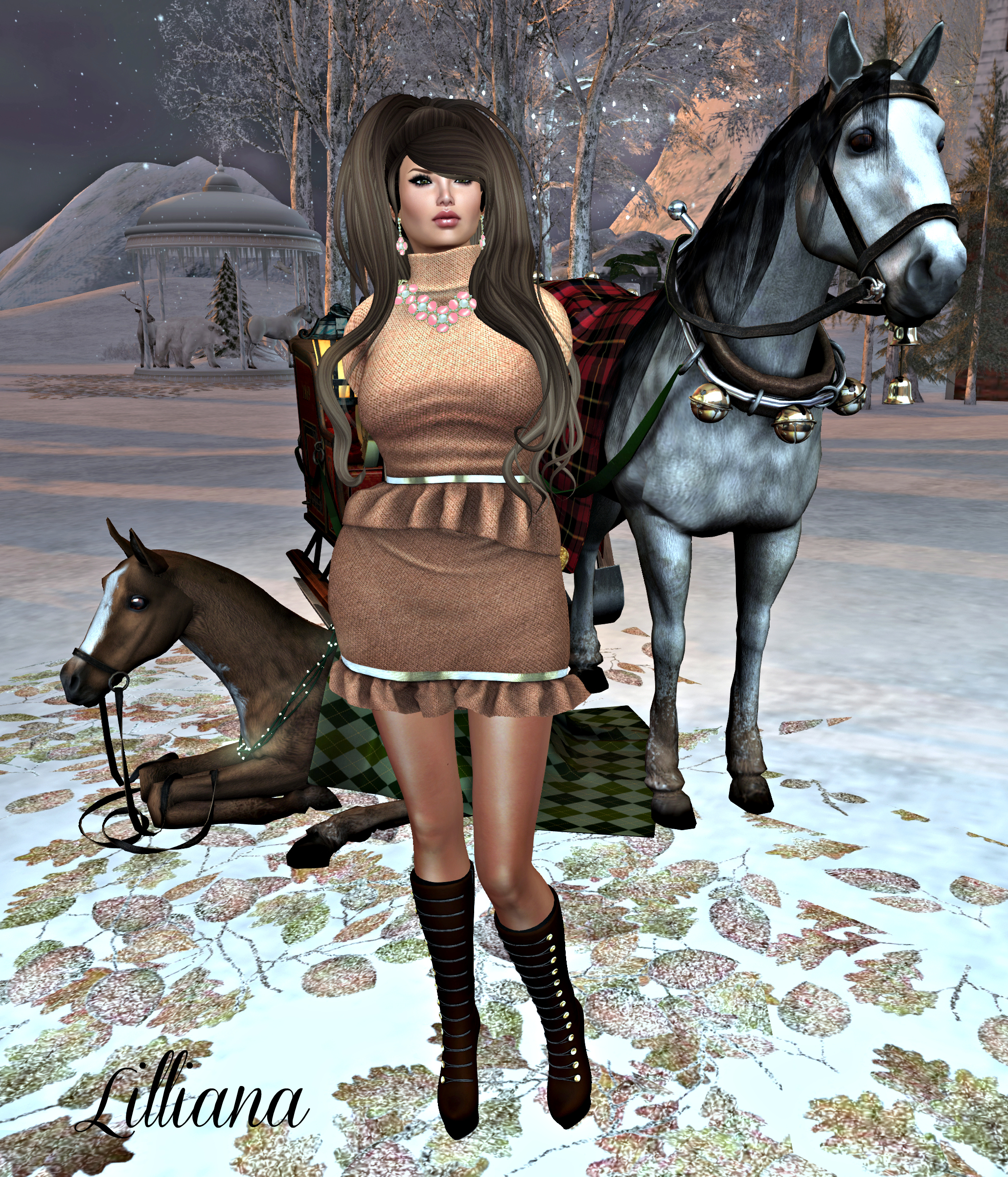 December 29th Blog Post Photo #4_cropped