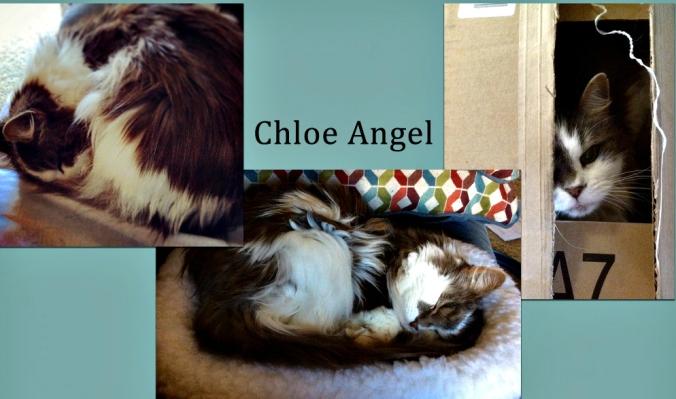 Chloe Angel