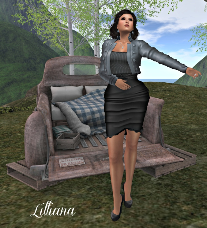 February 11th Blog Photo 3, Pillows SIM_cropped