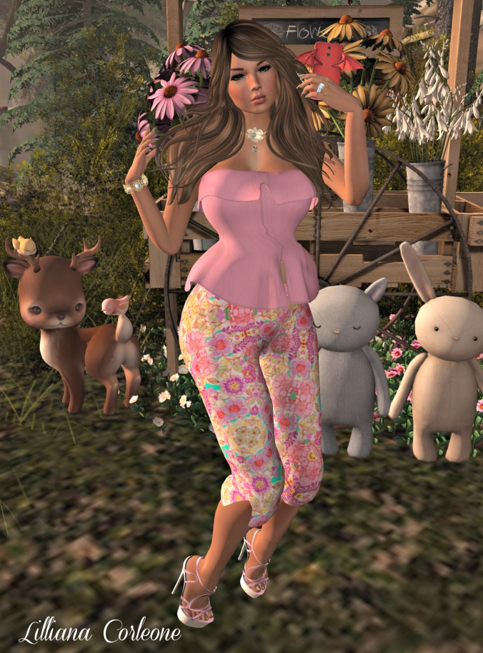 July 16th Blog post Photo #6_cropped