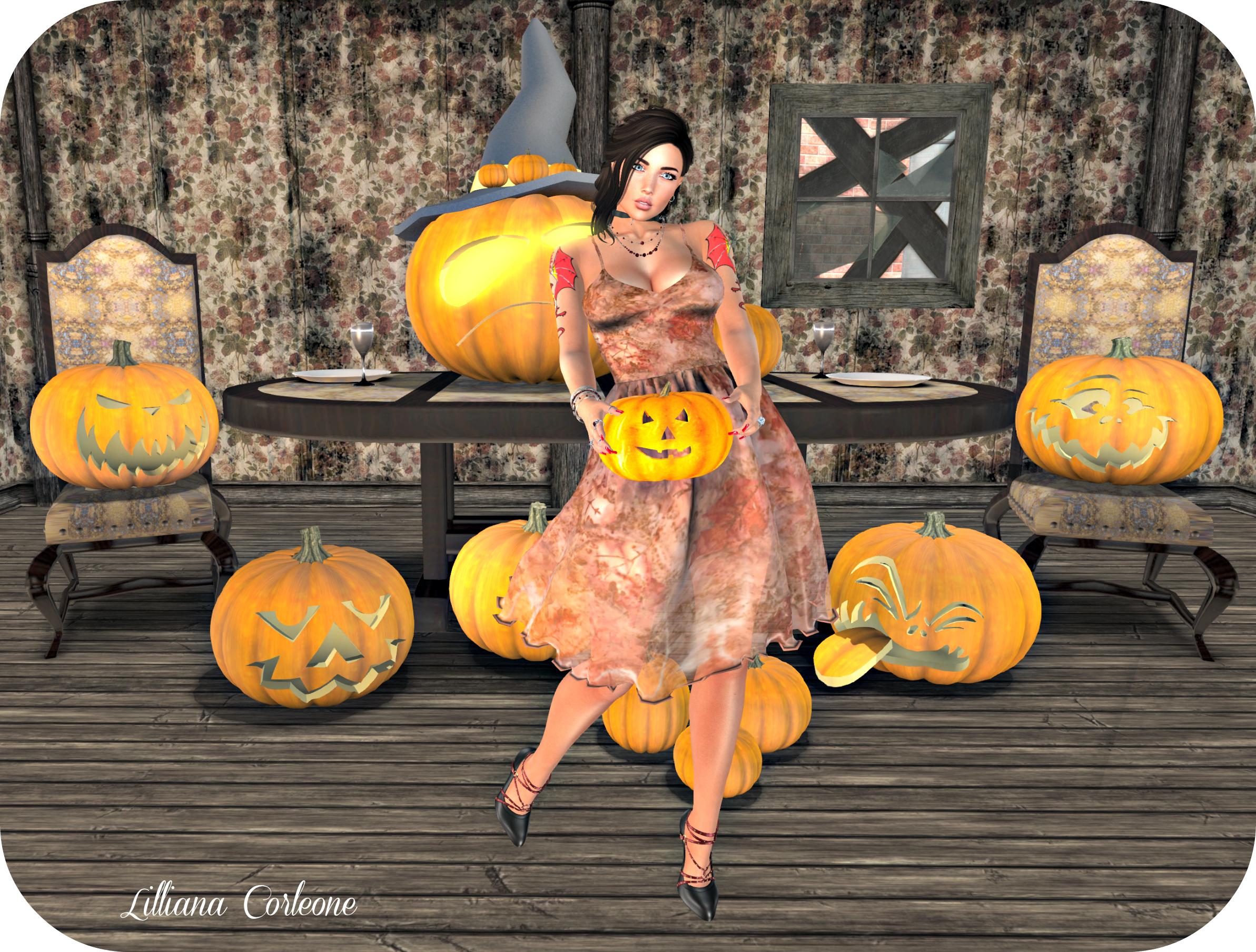 october-13-blog-post-photo-1v2_cropped