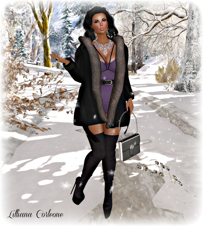 december-29th-blog-post-photo-3_croppedv2