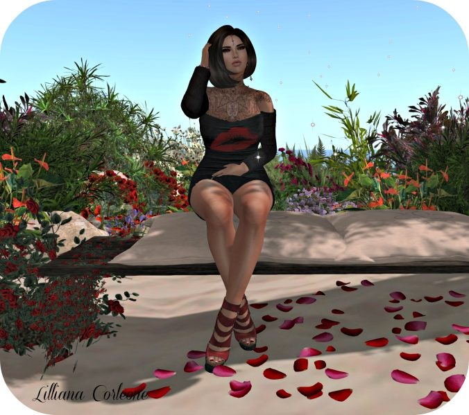 feb-9th-blog-post-photo-sit1_cropped