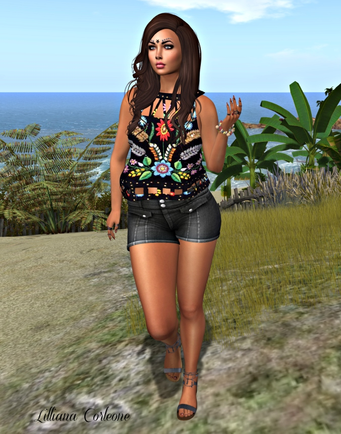 August 4th Blog Post Photo #3_cropped